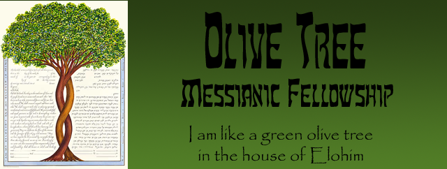 Olive Tree Messianic Fellowship - Olive Tree Messianic Fellowship